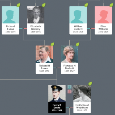 Image of Percy Evans Forebears family tree.