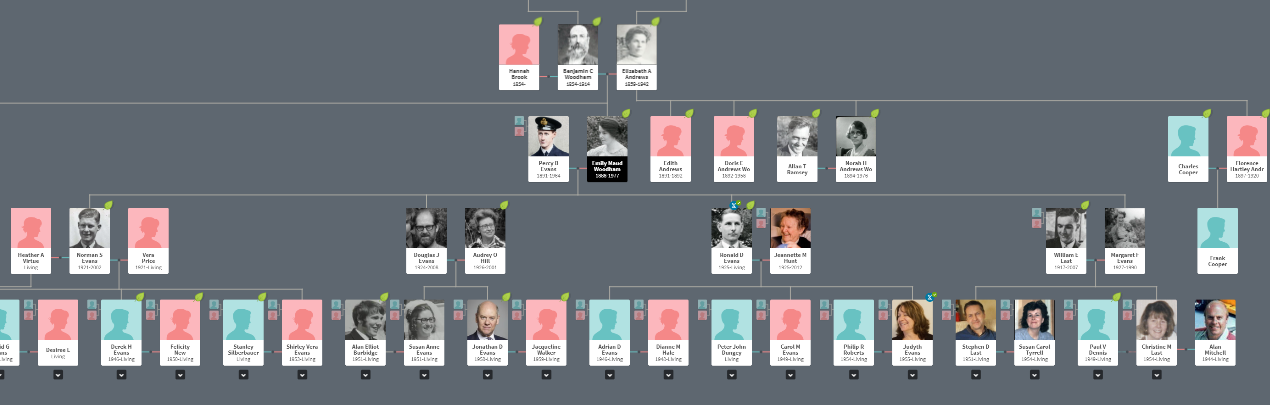 Image shows the Maud Evans family tree.